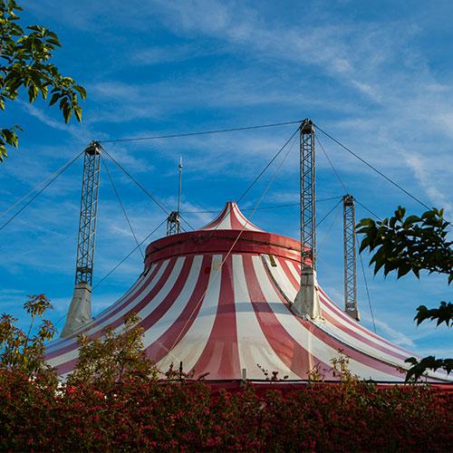 La Gran Carpa del Circo de Sendaviva.